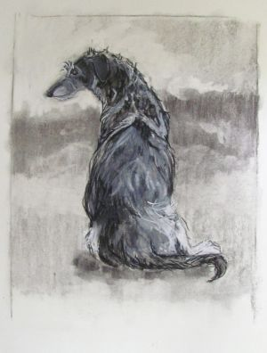schets deerhound.jpg